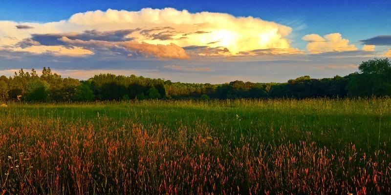 Scenic in Sherrils Ford, North Carolina
