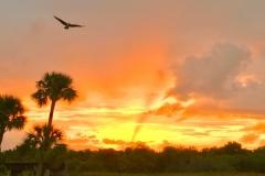 Sunrise Palm Bay, Florida